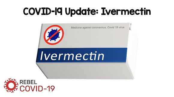 Ivermectin Donation Received by the Ministry of Public Health